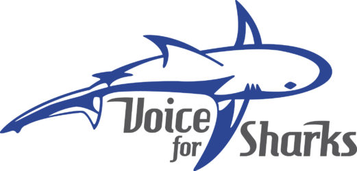 Voice for Sharks